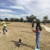 Frisbee_Golf_1-2014